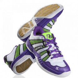 CHAUSSURES HANDBALL ET INDOOR RACE R5 FEMME BLANC/VIOLET SALMING DESTOCKAGE